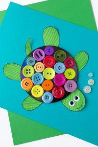 6-turtle